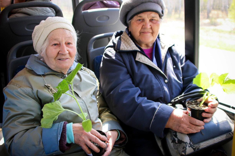 Скидка для пенсионеров будет действовать на пригородных маршрутах в Удмуртии, фото-1